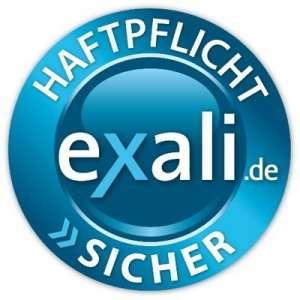 logo-exali